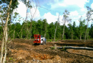 land-clearing-atlanta-georgia