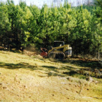 Carolina Brush Cutters, Columbia SC, 803-237-2324